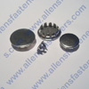 NICKEL PLATED PLUG BUTTON