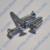 #4 CHROME PHILLIPS OVAL TRIM SCREWS