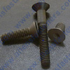 Chrome Bolts Stainless Steel Bolts Metric Bolts Socket