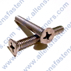 10/24 STAINLESS STEEL FLAT HEAD PHILLIPS SCREW