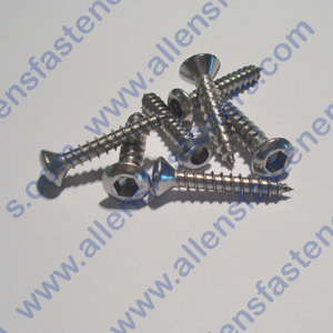 #8 STAINLESS OVAL HEAD ALLEN SHEET METAL SCREW